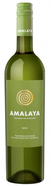 AMALAYA - Torrontes - Salta - Argentinien